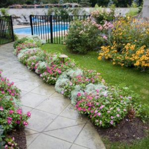 Landscaping Around a Paver Walkway in Tulsa OK